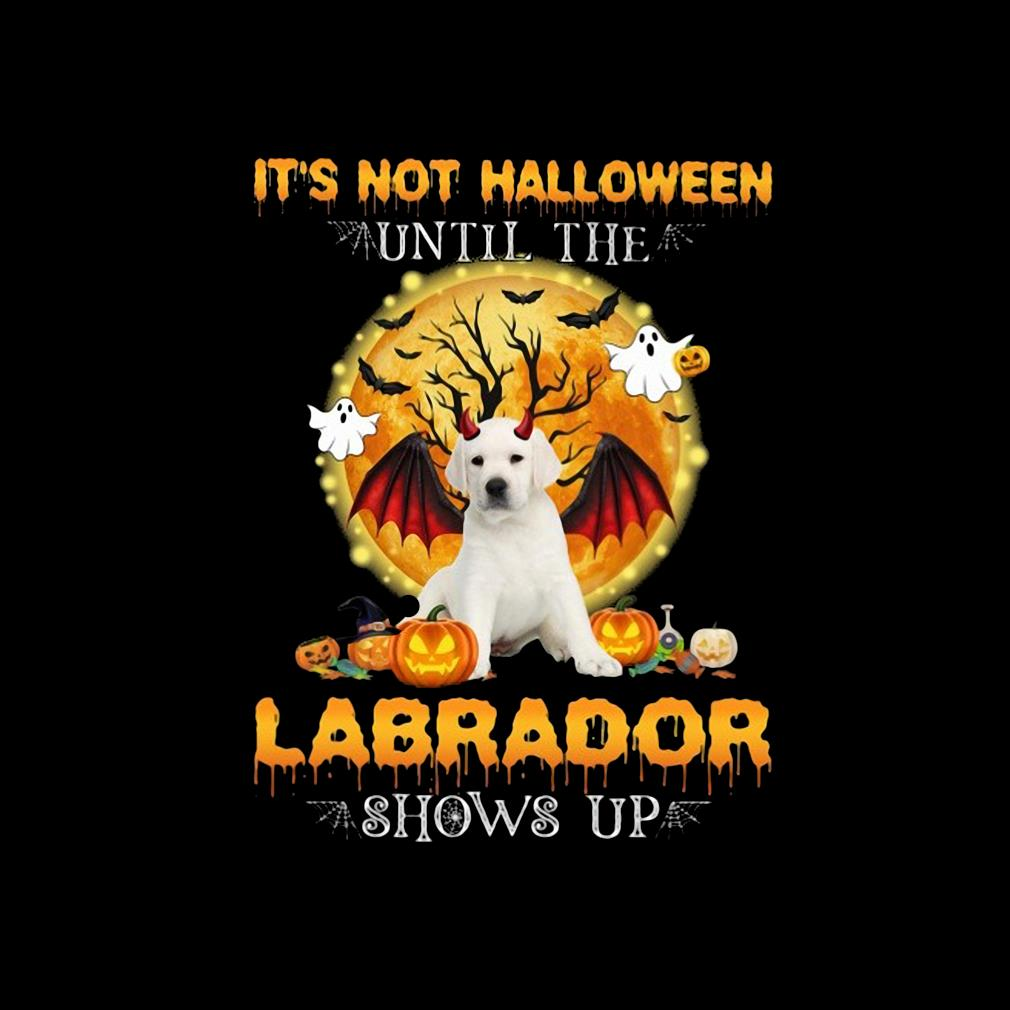 Funny it's not Halloween until the Labrador shows up s invisible