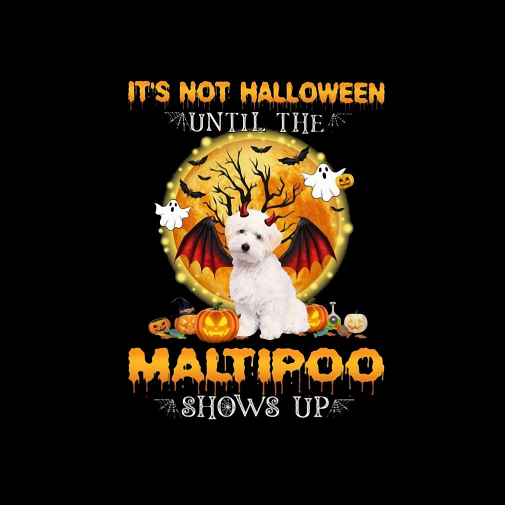 Funny it's not Halloween until the Maltipoo shows up s invisible