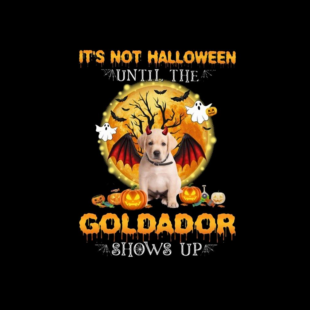 Official it's not Halloween until the Goldador shows up s invisible