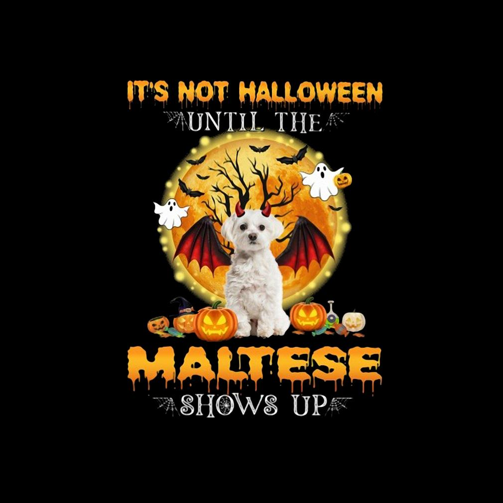 Official it's not Halloween until the Maltese shows up s invisible