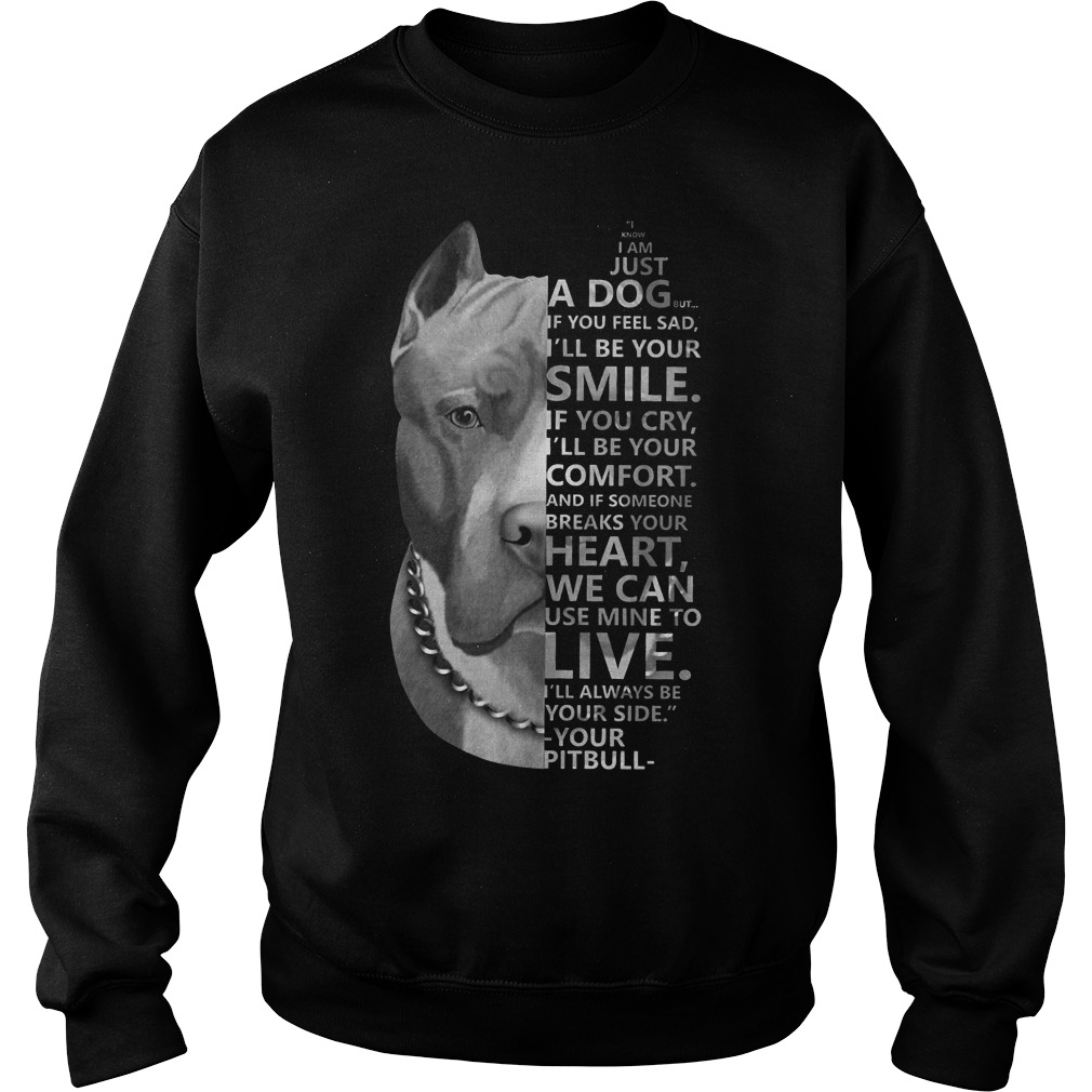 I know I am just a dog but if you feel sad I'll be your smile Pitbull sweater