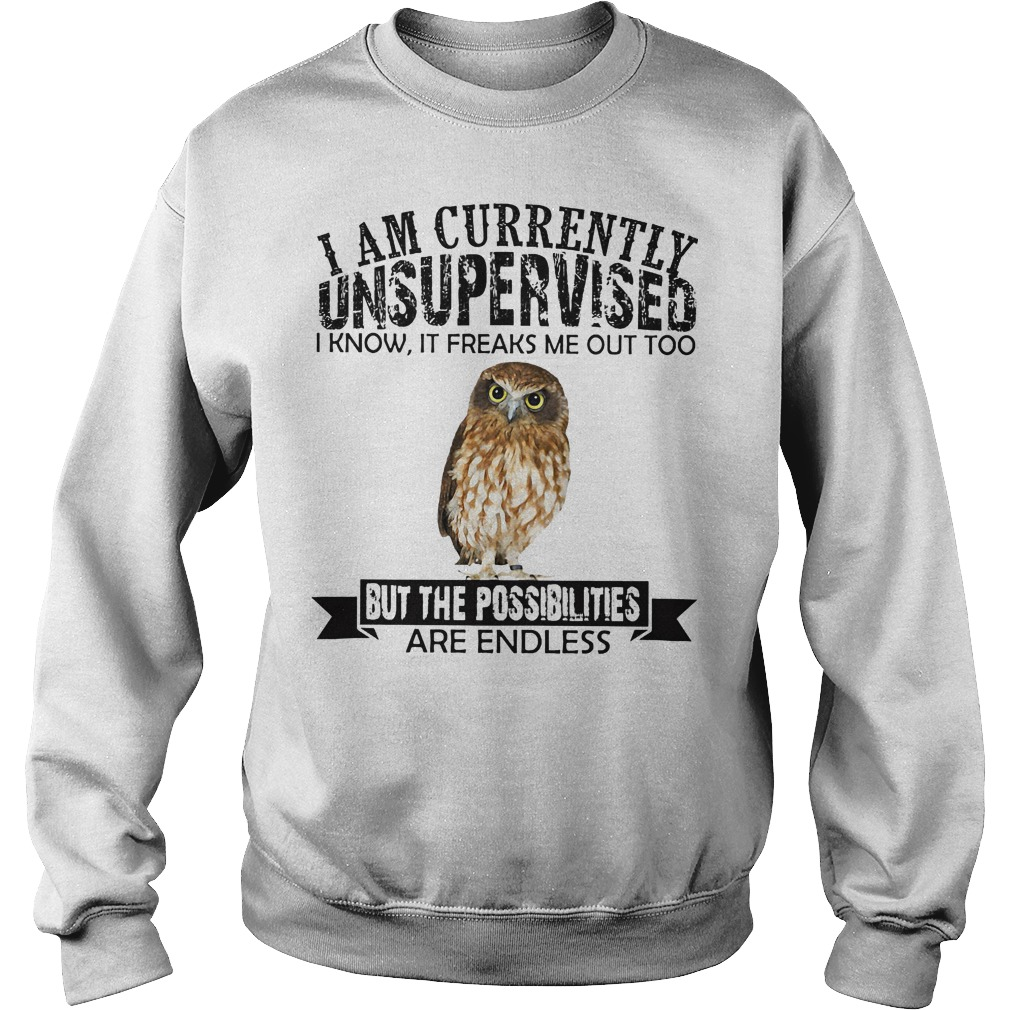 I am currently unsupervised I know it freaks me out too but the possibilities are endless Owl sweater