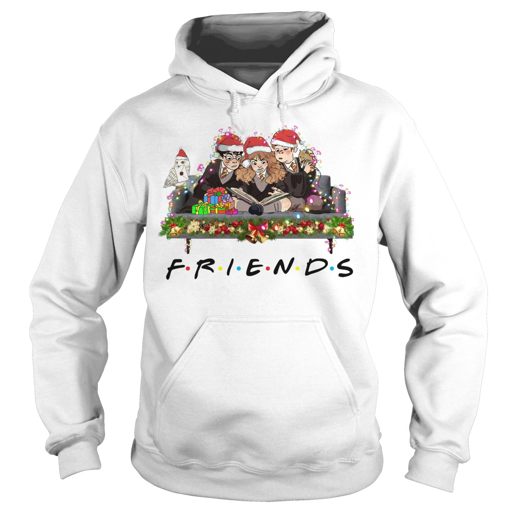 Merry Christmas Harry Potter Friends hoodie