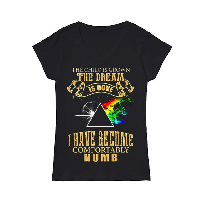 The child is grown the dream is gone I have become comfortably numb V-neck